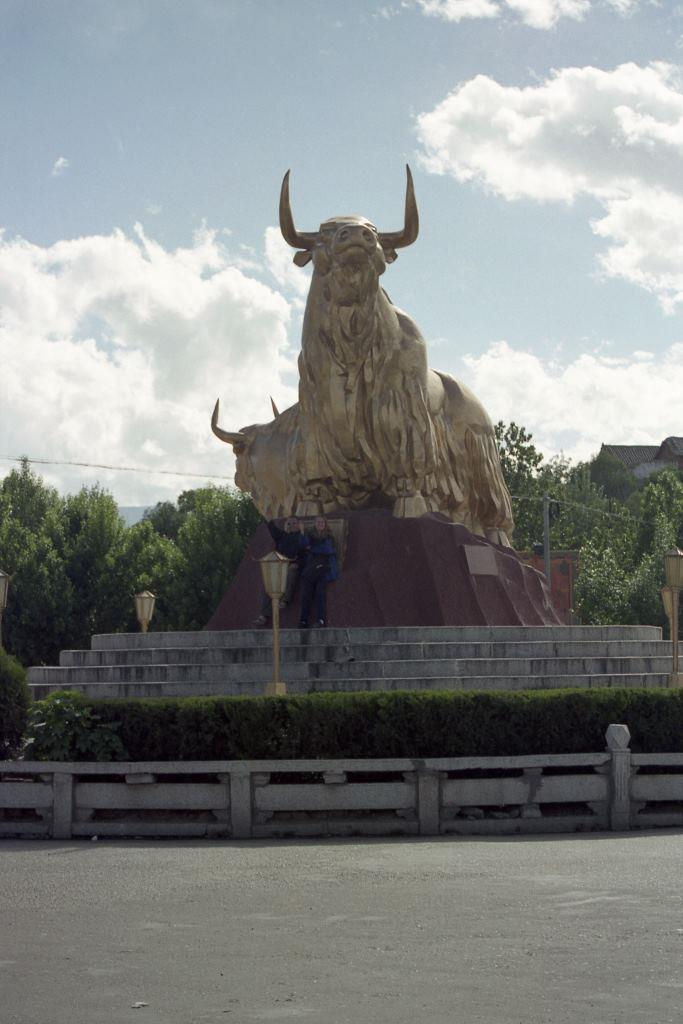 golden_yak