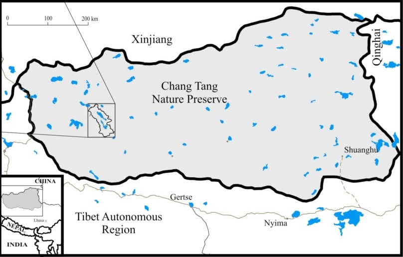 The Tibetan Plateau supports several threatened endemic species, the survival of which depends on protection within the Chang Tang Nature Preserve.
